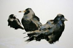 Kate Osborne Rooks in the Snow - Ink and watercolour