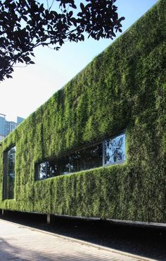 View full picture gallery of CR Land Guanganmen Green Technology Showroom Green Architecture, Architecture Details, Vertical Garden Wall, Vertical Gardens, Green Initiatives, Green Facade, Green Office, Green Technology, Roof Design