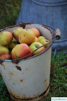 äpplen,hink,rost
