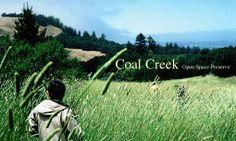 Coal Creek: ok for dogs