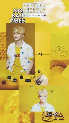 Mingyu, Seungkwan, Woozi, Seventeen Memes, Hoshi Seventeen, Hamster Wallpaper, Korea Wallpaper, Bad And Bougie, Seventeen Wallpapers