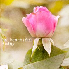 be beautiful today