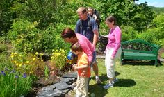 Daniel Boone Native Gardens in Boone, NC. #horninthewest #danielboonepark #boonenc