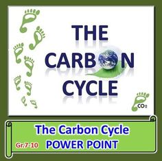 The carbon cycle powerpoint worksheet editable photosynthesis the carbon cycle power point this is a 31 slide power point for gr7 10 topics 1 carbon as a cycle 2 abiotic and biotic sources of carbon ccuart Image collections