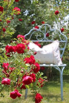 If you are thinking of rose gardening don't let this rumor stop you. While rose gardening can prove to be challenging, once you get the hang of it, it really isn't that bad. Beautiful Gardens, Beautiful Flowers, Red Cottage, Love Rose, My Secret Garden, Arte Floral, Dream Garden, Garden Inspiration, Red Roses