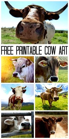 Cow Canvas: Print Art for Free! Make a cow canvas with a free printable cow image and some Mod Podge! Cow Kitchen Decor, Cow Decor, Cow Canvas, Country Chic Cottage, Cow Painting, Cow Art, Free Prints, Art Design, Animal Paintings