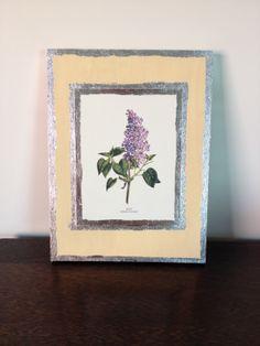 Pretty in Purple Lilac
