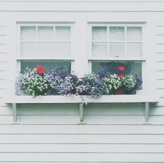 Window boxes are so charming. By @Vicki Smallwood Dvorak