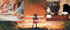 Skelettet, ikke adrenalin, igangsætter stress Stress, Movies, Movie Posters, Animals, Velvet, Animales, Film Poster, Animaux, Films