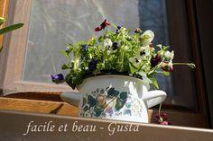 facile et beau - Gusta: Blumentöpfe