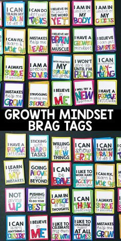 This set of brag tags is perfect for reinforcing and encouraging the growth mindset mentality in your classroom. The brag tags included in this set are: -Willing To Try New Things -Sticking With Hard Tasks -Not Giving Up -Pushing Yourself To Do Your Best