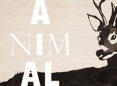 Animal / Lokal Helsinki