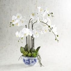 Our arching sprays of faux white orchids with a succulent base add a touch of wow to any space—all beautifully anchored in a classic blue and white ceramic planter. Artificial Floral Arrangements, Artificial Orchids, Orchid Arrangements, Succulent Arrangements, Moth Orchid, Phalaenopsis Orchid, Orchid Planters, Sideboard Decor, White Ceramic Planter