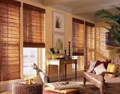 Woven Wood Shades from Budget Blinds come in a wide variety of beautiful styles. Schedule a free in-home consultation to see our full line of Woven Wood Shades. Decor, Home, Living Room Colors, Windows, Blinds, House, Woven Wood Shades, Window Coverings, Woven Blinds