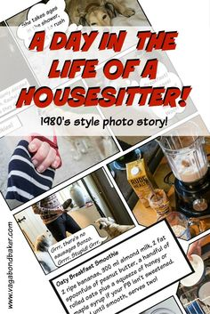 Do you remember those amazing magazine photo stories in the Here is a day in the life of a house sitter as shown as a 2015 photo story!