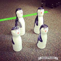 Sense of Wonder: Penguin Bowling