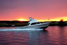 All-American Bertram 31' #legendary #sportfishing #yacht