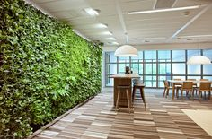 Donkergroen Interieurbeplanting || Groene wanden