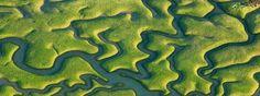isla minima paisajes - Cerca amb Google