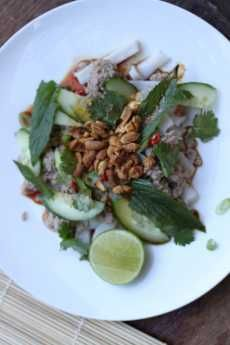 6204---0  Sticky Pork and Noodle Salad