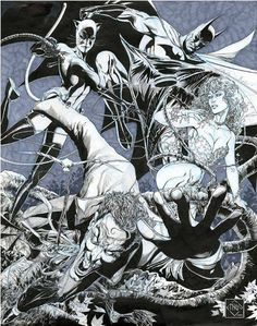 Batman and Co. by Ethan Van Sciver *