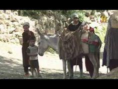 La ruta de la seda. Textiles, Camel, Horses, Youtube, The Originals, China, Animals, World, Paths