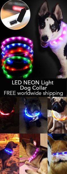 LED NEON Light Dog Collar