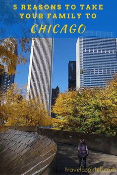 5 reasons to take your family to Chicago   Travel Cook Tell