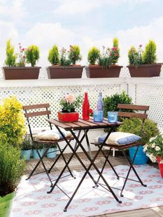 Sichtschutz für Balkon weißes holzgitter geländer hoch pflanzenkübel