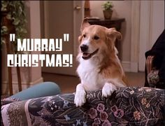 Mad About You images Murray Christmas! HD wallpaper and background photos (17899079)