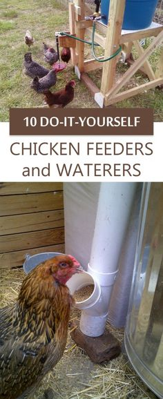 Chicken Coop - 10 DIY Chicken Feeders and Waterers for your flock! Building a chicken coop does not have to be tricky nor does it have to set you back a ton of scratch. Backyard Chicken Coops, Chicken Coop Plans, Building A Chicken Coop, Diy Chicken Coop, Chickens Backyard, Pallet Chicken Coops, Chicken Coop Large, Chicken Coop Designs, Chicken Barn
