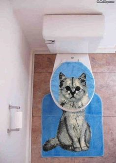 This toilet makes just the right splash in my guest bath.