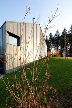 Villa within Olgoj Chorchoj | Katerina Hroncova (Jurakova) |  Main architect: Dan Paterko | Archinect
