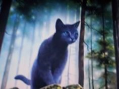 Bluestar-Leader of Thunderclan before Firestar. Had a mate from Riverclan named Oakheart. Gave up her kits to bacome clan leader. Killed by a dog pack.