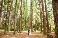 explore alvarez wedding state parks and more