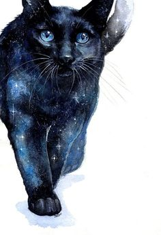 Realität ist nur eine geteilte Illusion: Foto - Art - You are in the right place about Cute Cats angry Here we offer you the most beautiful pictures a Night Sky Painting, Galaxy Painting, Art Galaxie, Black Cat Tattoos, Tattoo Black, Galaxy Cat, Watercolor Cat, Foto Art, Space Cat