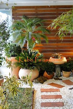 New Apartment Balcony Garden Zen Patio 45 Ideas Apartment Balcony Garden, Terrace Garden, Indoor Garden, Indoor Plants, Outdoor Gardens, Backyard Playground, Backyard Patio, Landscape Design, Garden Design
