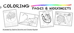 Ask a Biologist. Free coloring pages and worksheets. Cells, insects and some animals.