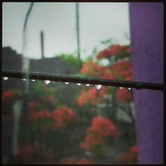 The Twilight Droplets