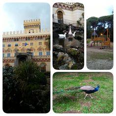 Parco comunale Arenzano