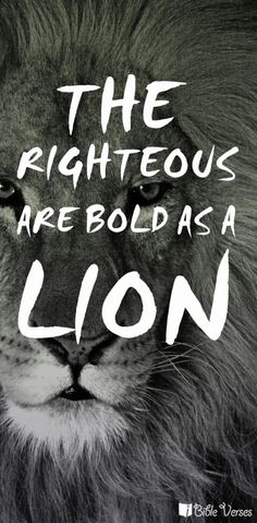 The wicked flee when no one pursues, but the righteous are bold as a lion. (Proverbs 28:1 ESV)