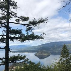 Discovered a new hike in our local area. You wouldn't know it was there but I kept seeing all these stunning vistas on fellow Shuswapers IG… New Hike, Tree Tops, Lake Life, British Columbia, Wilderness, Lush, Hiking, River, Mountains