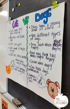 After reading about Cats and dogs, brainstorm with students different characteristics of cats and dogs. I love that she later had the kiddos use the list to write a persuasive piece on which pet was the best!