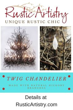 The perfect alternative to the antler chandelier, this twig and branch chandeliers is handcrafted from natural hickory branches and real twigs. It's rustic and natural, yet at the same time adds a sophisticated edge to any room. Twig Chandelier, Chandeliers, Outdoor Chandelier, Western Decor, Rustic Decor, Rustic Design, Rustic Style, Twig Lights, Rustic Home Interiors