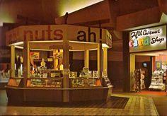 Art Not Found in The Restaurant