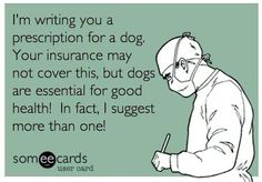Funny Ecard about Dogs. Dogs are therapy. They may not be covered by your insurance plan, but they will cure depression, anxiety, and many other key factors to help you live a happy life. Quotes about dogs. I Love Dogs, Puppy Love, Cute Dogs, Funny Dogs, Awesome Dogs, Pekinese, Fu Dog, Stowa, Dog Rules
