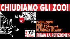 ABOLIZIONE DEGLI ZOO E DELLA DETENZIONE IN CATTIVITA' DEGLI ANIMALI SELVATICI  -  ABOLITION OF ZOOS AND DETENTION OF WILD ANIMALS IN CAPTIVITY