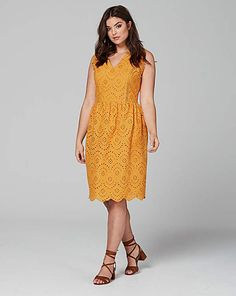 dfe621a0eb9f9 Lovedrobe Fit   Flare Broderie Dress
