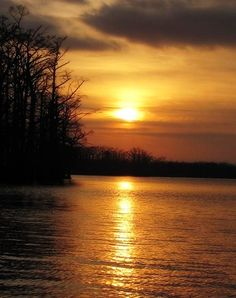 Reelfoot Lake at sunset