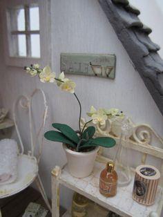 Orchidée orchidée à 01:12 - à l'échelle 1/12ème